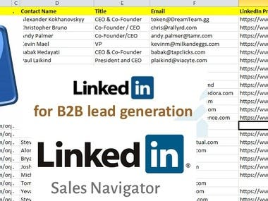 B2B LinkedIn Lead Generation & web research for your busines