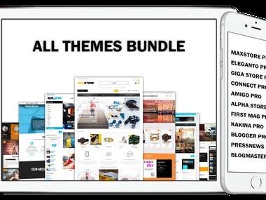 Wordpress Theme Develop