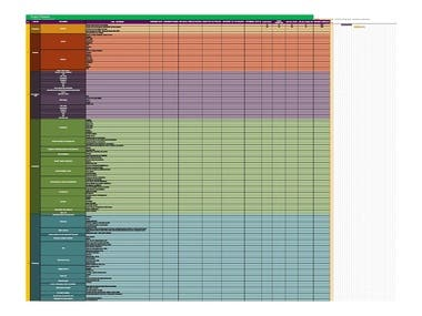 Excel Fromatting Project