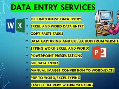Professional Data Entry Expert
