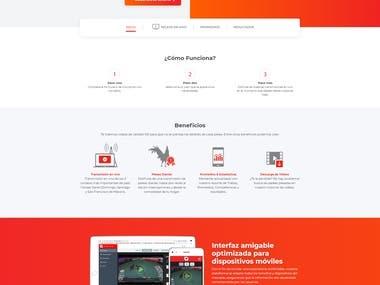 Diseño/desarrollo de página web para Gallerosoy