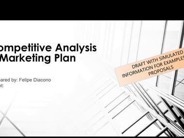 Marketing Plan & Competitive Analysis