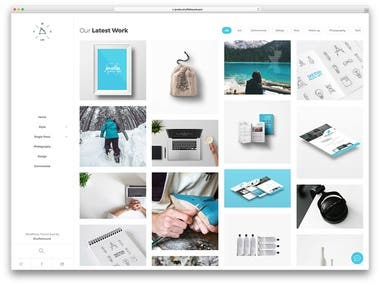 Professional and Cool / Wordpress template for Startups