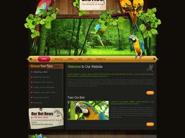 Design and application for a website which guides bird owner