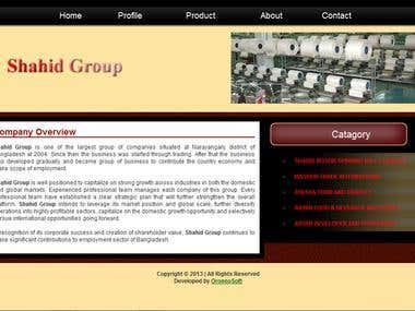Web Design - Shahid Group