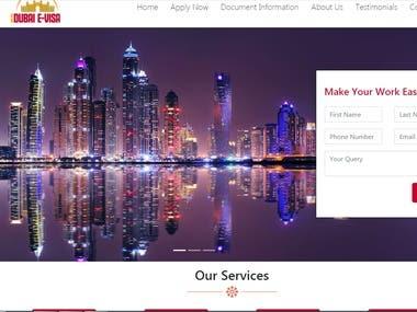 Website development for Visa