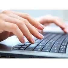 I am professional Data Entry operator
