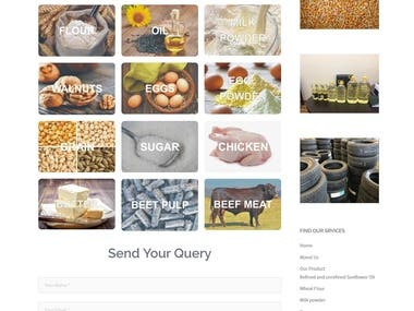 Company responsive Website