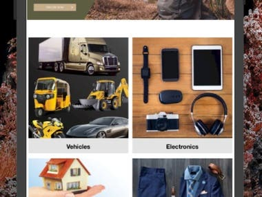 Updating and Fixing E-Commerce Website & Mobile Application