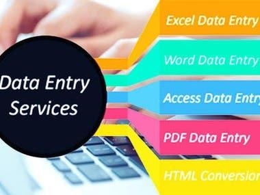 World class Data Entry work