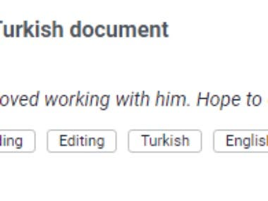 Turkish proofreading project