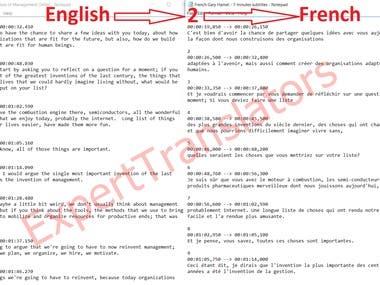 English to French subtitle translation
