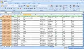 my previous work done as data entry workrer
