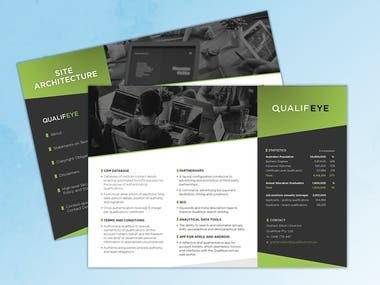 Qualifeye Brochure & Logo Design