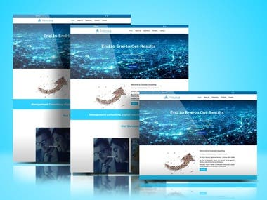 Website for Caravela Consulting
