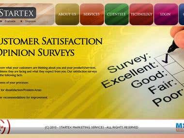Startexmarketing Services Website