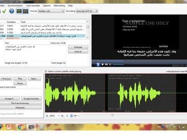 Screenshot/Subtitle