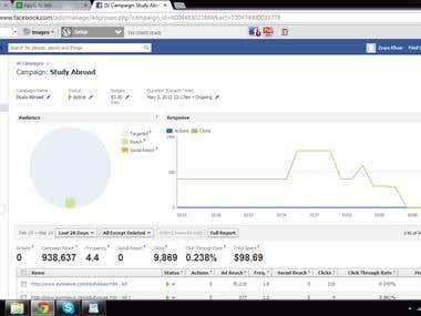 Facebook advertisng