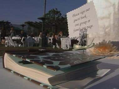Wedding Demo Reel