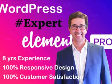 WordPress web developer - 100% Responsive - SEO