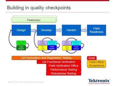 Customized Agile Process