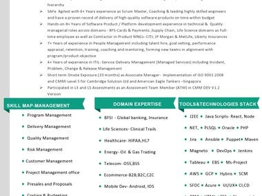 Project and Program Management Professional
