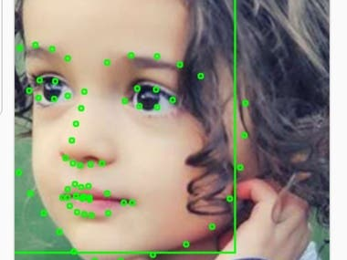Face Detection/Recognition, Facial Landmark Detection