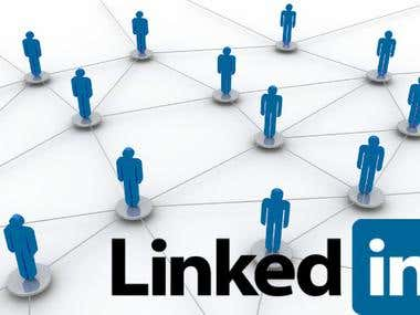 LinkedIn Management