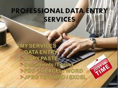Professional Data Entry Operator