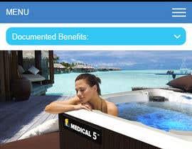 Nro 9 kilpailuun Make Website Mobile Friendly - EASY WORK EASY MONEY käyttäjältä saidesigner87