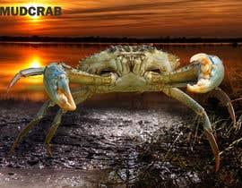 Nro 70 kilpailuun Australian Mud Crab käyttäjältä dulhanindi