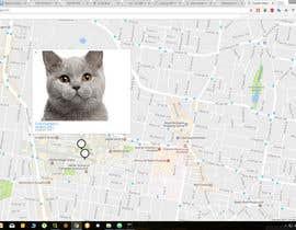 nº 1 pour Need a Google Maps Website Enhancement par kabapy