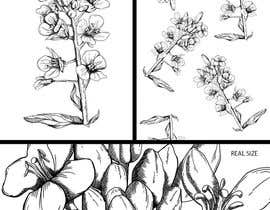 nº 28 pour Illustrate Rapeseed flowers par vietcatscontact