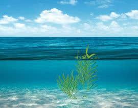 nº 54 pour Quickly need artistic diagram similar to ocean kelp above-below water par bjakrishnan44