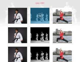 #33 для Website Design / Template Mockup for Martial Arts Club от Shiriharusha