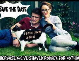 steven78 tarafından Wedding invite photo with date shaved into the cat's fur - very unique brief! için no 62