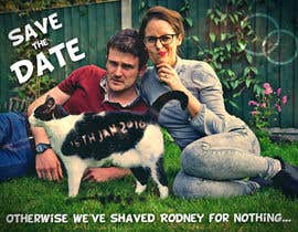 Spector01 tarafından Wedding invite photo with date shaved into the cat's fur - very unique brief! için no 70