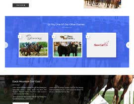 #28 for Update a website to Bootstrap/Responsive Layout af adixsoft
