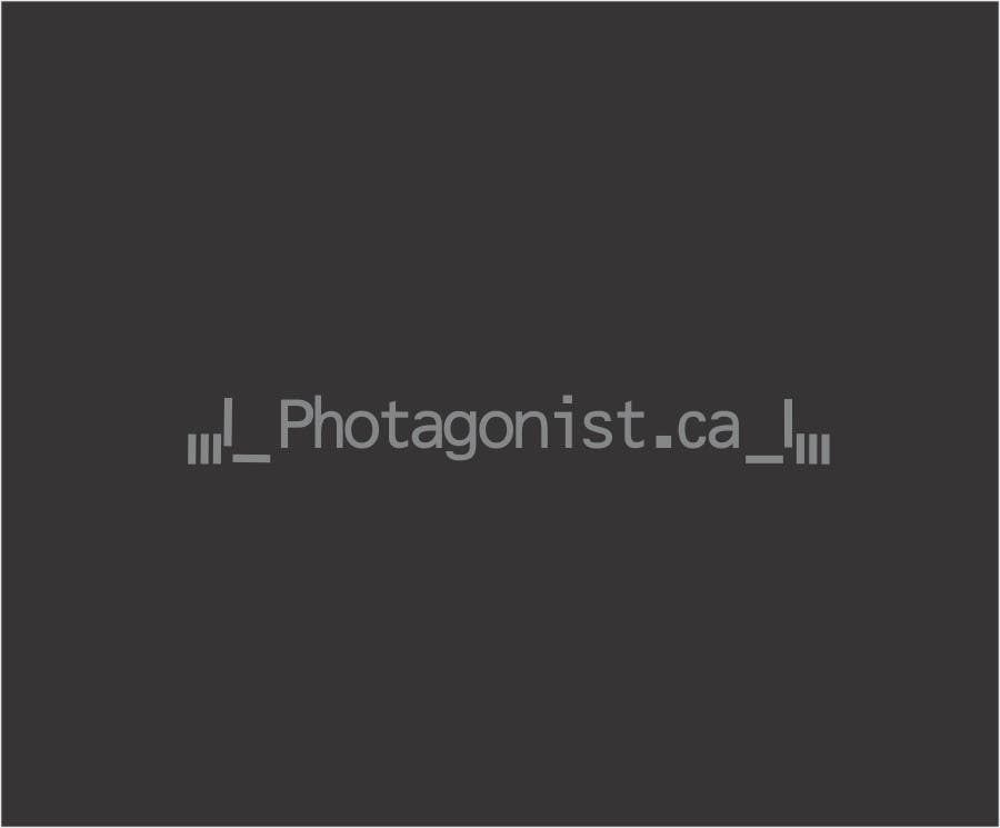 Contest Entry #564 for Logo Design for Photagonist.ca