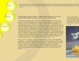 Nro 9 kilpailuun We need a website for our management system käyttäjältä powderkola
