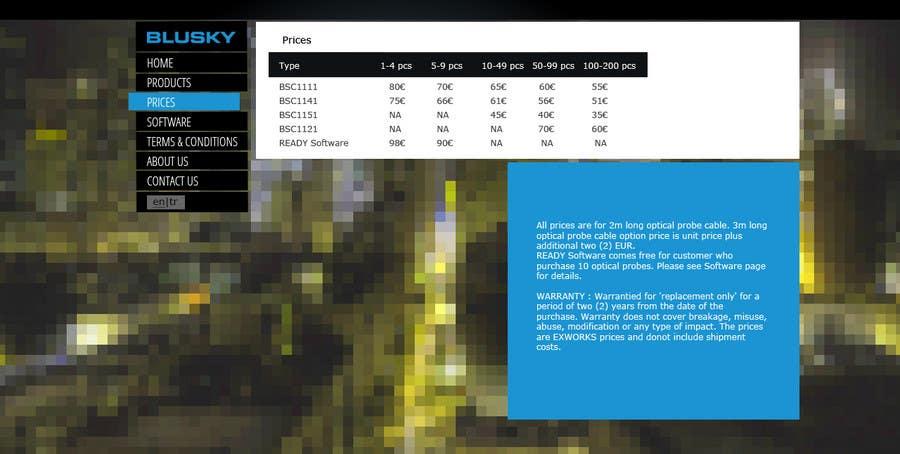 Конкурсная заявка №33 для Website Design for BLUSKY optical probes