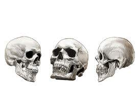#58 for Illustrate a Skull with a Detail by zulfikahermi