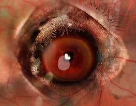 "#8 para Make ""Art"" out of medical ophthalmology pictures por erickaeunicewebb"