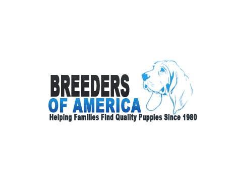 Konkurrenceindlæg #                                        79                                      for                                         Logo Design for Breeders of America