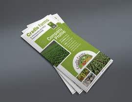 #18 for Design a Brochure & Business card by zestfreelancer
