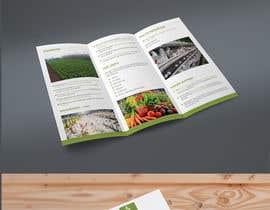 #17 for Design a Brochure & Business card by mdtafsirkhan75