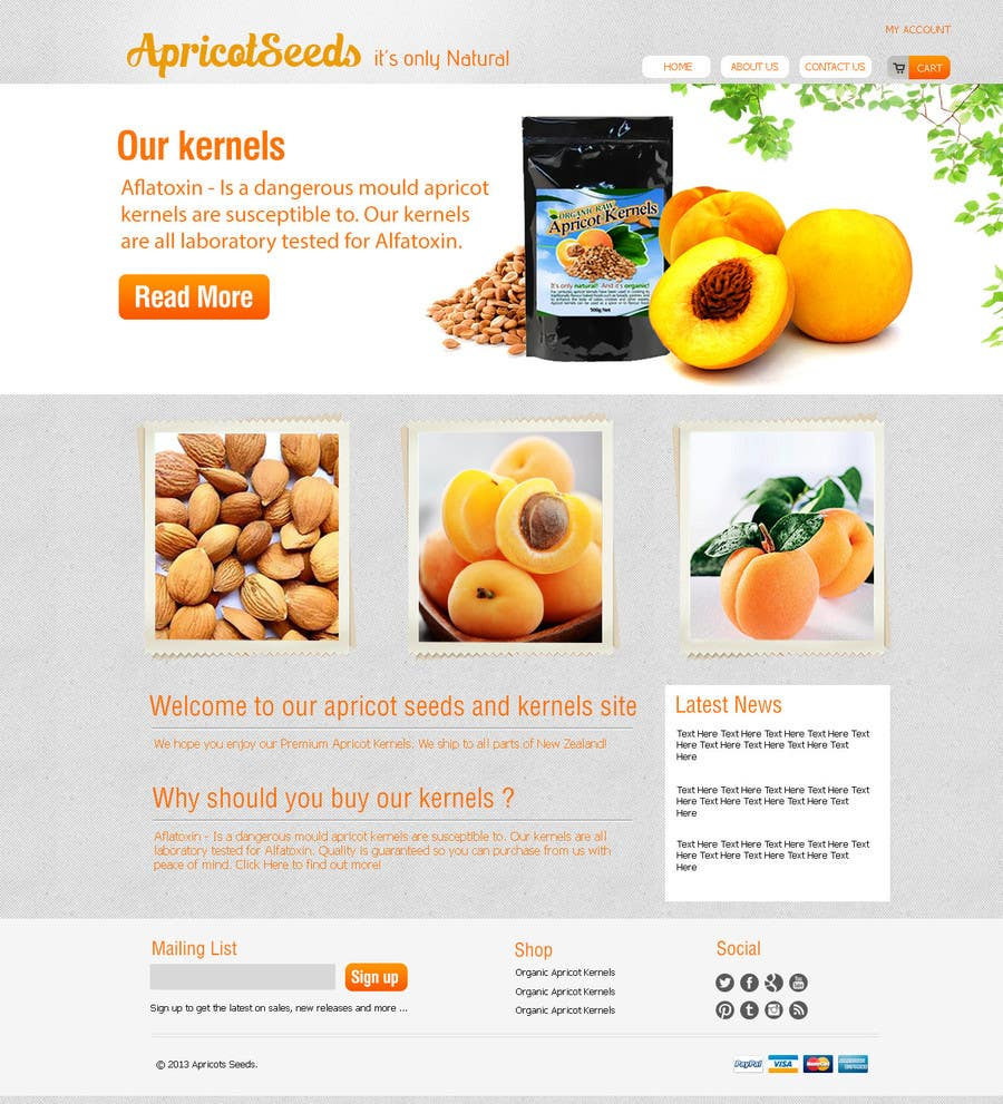 #12 for Graphic Design - Redesign FRONT PAGE Only - apricotseeds.co.nz website by KreativeAgency