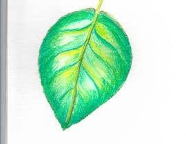 Nro 10 kilpailuun watercolour watercolor hand sketch artwork käyttäjältä trisahugo