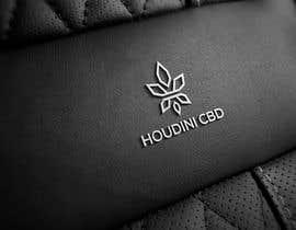 #114 for houdini cbd logo av brandingstyle