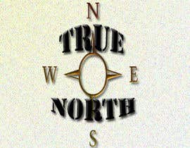 #1 cho Logo Design for True North Scientific bởi middenka